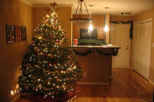 Çam ağacı ışık süsleme
